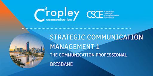 Strategic Communication Management 1: The Communication Professional