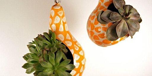 Awesome indoor outdoor garden!  Hanging gourd succulent garden!  BYOB