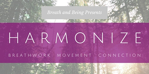 Harmonize: Breathwork, Movement, and Connection