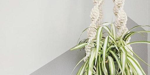 Peculiar Abode: Macrame Plant Hanger Workshop