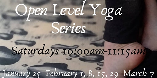 Open Level Yoga Series