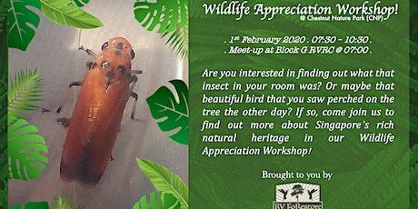 Wildlife Appreciation Workshop (W.A.W) tickets