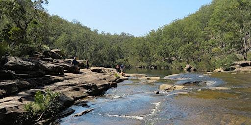 Bush Explorers - 'Autumn Almanac' - 'Serenity Stroll' - The Basin Reserve