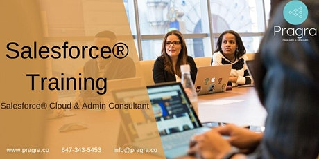 Salesforce Admin & Cloud Consultant - Training & Placement - 1 Week Free tickets