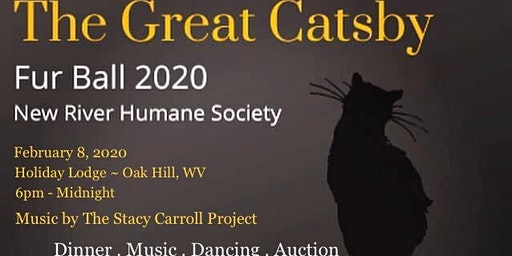 The Great Catsby ~ NRHS 2020 Fur Ball