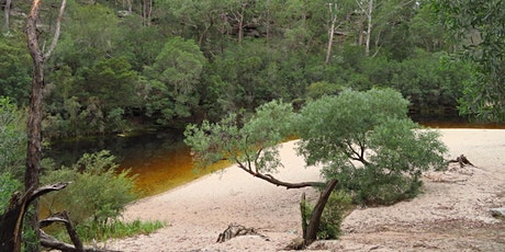 Bush Explorers - 'Autumn Almanac'  Bush-tucker Walk - Simmo's Beach Reserve tickets