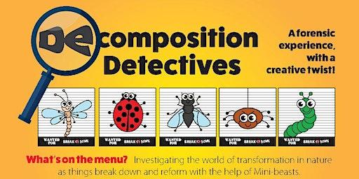 Decomposition Detectives