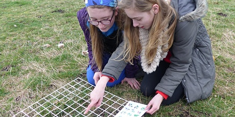 Investigating ecosystems for home educated children at RSPB Ham Wall tickets