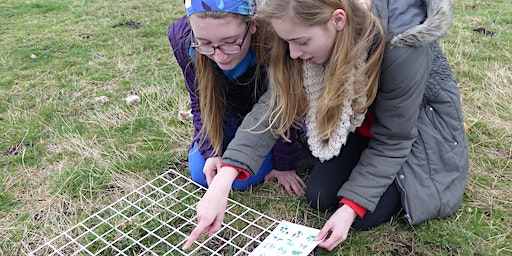 Investigating ecosystems for home educated children at RSPB Ham Wall