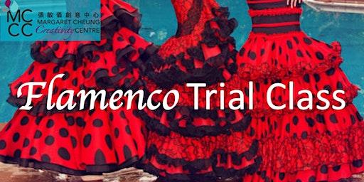 Flamenco Trial Class