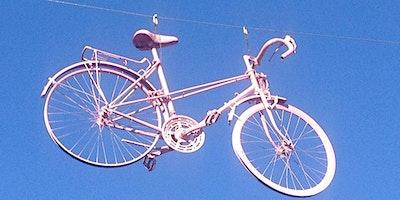 Mayo Pink Ribbon Charity Cycle 2020