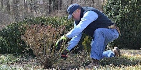 The Art of Pruning Workshop - Fair Oaks tickets