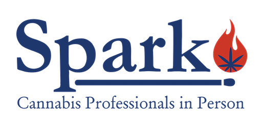 Spark Networking Night - February