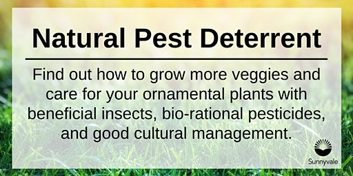 Natural Pest Deterrent Workshop