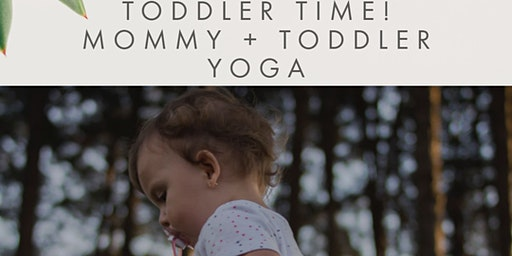 MOMMY + TODDLER SERIES