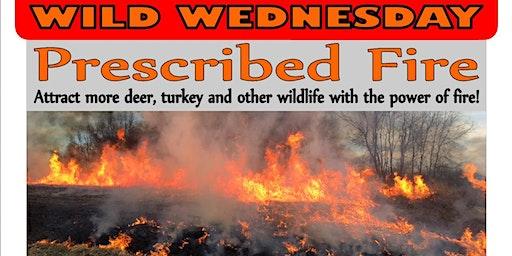 Wild Wednesday - Prescribed Fire