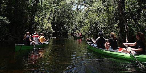 Eco-Paddle on the Wekiva