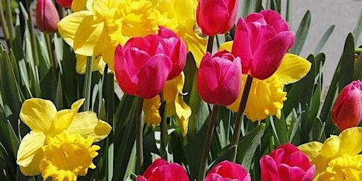 Taste of Spring Floral