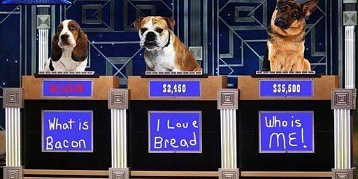 Take Your Dog To Trivia at Memphis Made Brewing