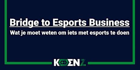 Bridge to Esports Business - Wat je moet weten om iets met esports te doen tickets