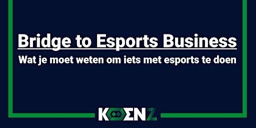 Bridge to Esports Business - Wat je moet weten om iets met esports te doen
