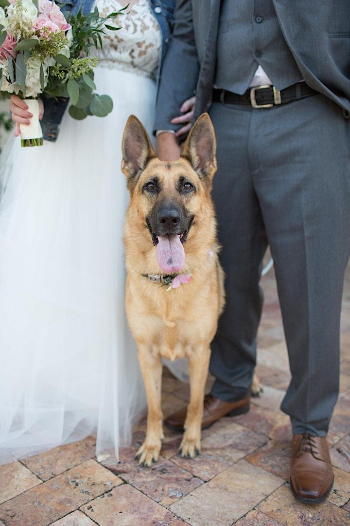 Deer Creek's Wedding Showcase image