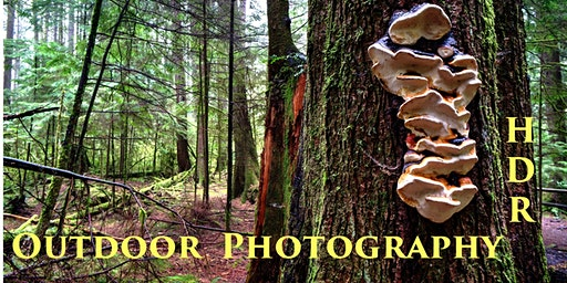HDR Photography in the Wild - Outdoor photography made CREATIVE