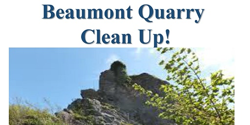 Beaumont Quarry Clean Up