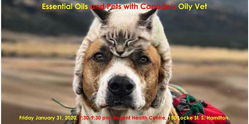 Essential Oils and Pets with Canada's Oily Vet