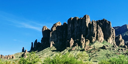 Desert Discoveries Hike
