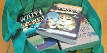Book Sale-$3 Bag Sale