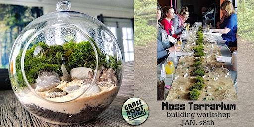 Moss Terrarium Building Workshop| Sip + Plant!