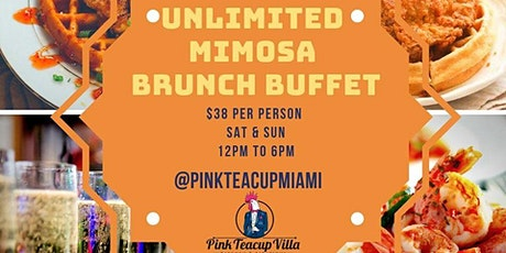 Unlimited Mimosa Brunch Day Party! tickets
