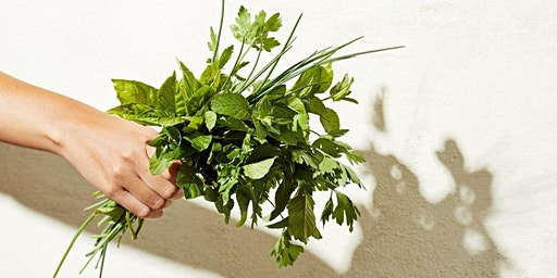 Growing & Cooking with Herbs 101