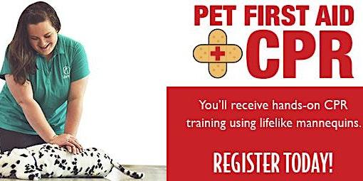 Pet Parent:First Aid & CPR CERTIFICATION
