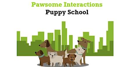 Puppy School - Wednesdays tickets
