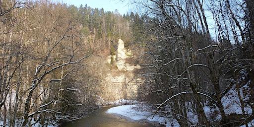 """Sa,08.02.20 Wanderdate """"Single Wandern Kloster Bad Herrenalb, Falkenfelsen und Wildgehege Dobeltal für 40-65J"""""""