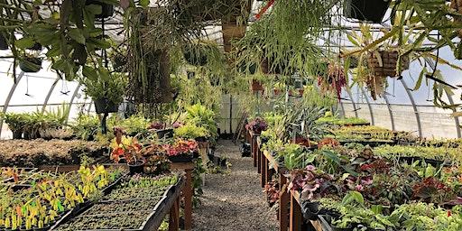 Plant Nerdist: Winter Care