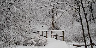 Family Winter Hike