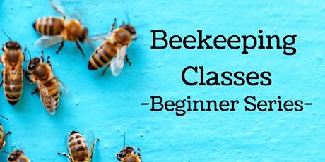 Beginner Beekeeping Comprehensive Course - 2 Days w/ 2 Master Beekeepers! tickets