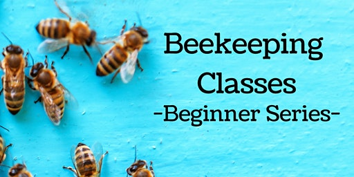 Beginner Beekeeping Comprehensive Course - 2 Days w/ 2 Master Beekeepers!