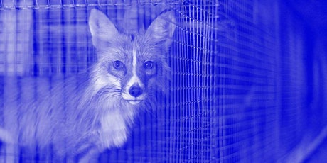 Certified Cruel: Fur Industry Certification and 'Animal WelFare-washing' Report Launch tickets