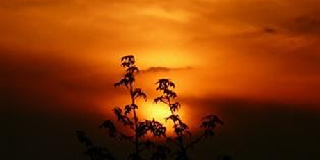 Sunset Hikes tickets