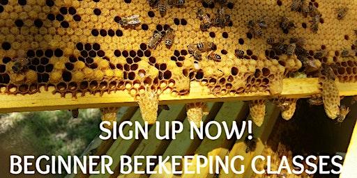 2-Day Beginner Beekeeping Class - March 7-8, 2020