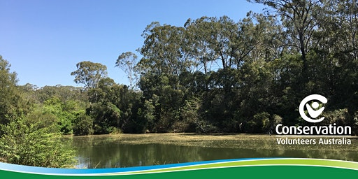 Restoring Wallacia's Wildlife Wonderlands! (Fowler Reserve)