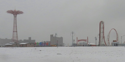 Winter Wonderland! Brooklyn: Coney Island and Coney Island Creek Photography & Nature Walk