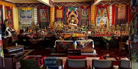 Tara Meditation Retreat tickets