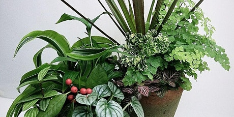 Indoor plant arrangement tickets