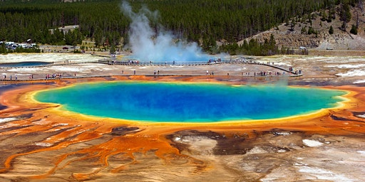 Yellowstone N.P. Sightseeing trip, 5 days
