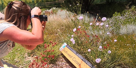 OTG 365 Photography Walk in Kings Park Botanic Gardens tickets